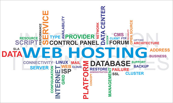 Domain Name & Server hosting
